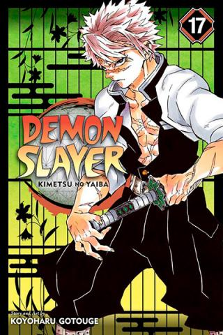 Demon Slayer Kimetsu no Yaiba Vol 17