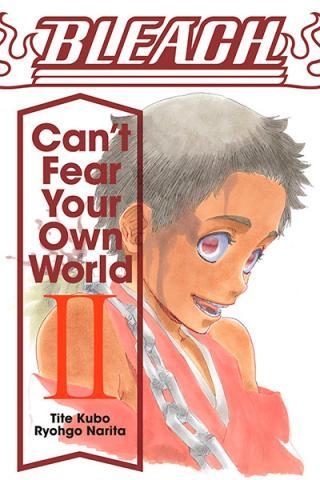 Bleach Can't Fear Your Own World Novel 2