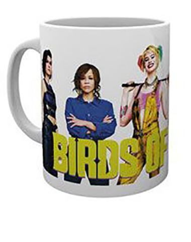 Birds of Prey Mug Group