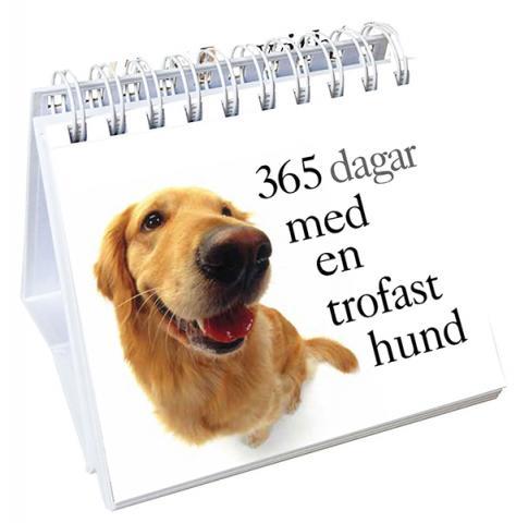 365 dagar med en trofast hund