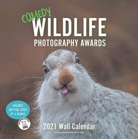 Comedy Wildlife Photography Awards 2021 Wall Calendar