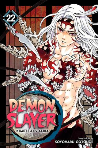 Demon Slayer Kimetsu no Yaiba Vol 22