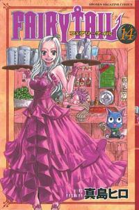 Fairy Tail 14