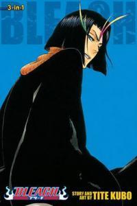 Bleach 3-in-1 Vol 13