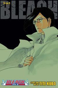 Bleach 3-in-1 Vol 24