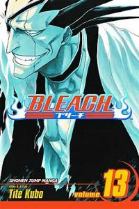 Bleach Vol 13