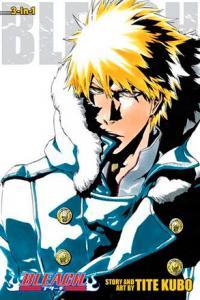 Bleach 3-in-1 Vol 17