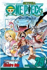 One Piece Vol 29