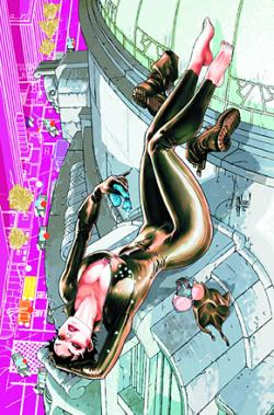 Catwoman Vol 1: The Game