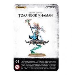 Tzeentch Arcanite Tzaangor Shaman