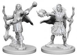 Elf Male Sorcerer