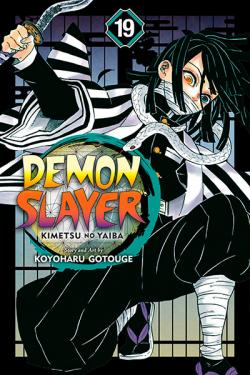 Demon Slayer Kimetsu no Yaiba Vol 19