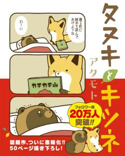 Racoon and Fox Vol 1