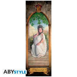Harry Potter Door Poster The Fat Lady
