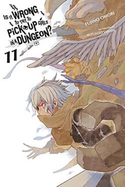 Is It Wrong To Try To Pick Up Girls in a Dungeon Novel 11