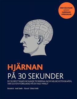 Hjärnan på 30 sekunder