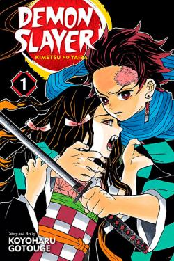 Demon Slayer Kimetsu no Yaiba Vol 1