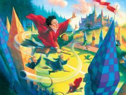 Harry Potter Puzzle 1000 pcs: Quidditch