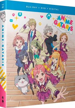 Anime Gataris Complete Series