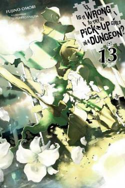 Is It Wrong To Try To Pick Up Girls in a Dungeon Novel 13