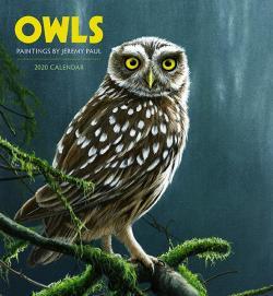 Owls: Paintings by Jeremy Paul 2020 Wall Calendar