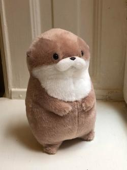 Kawauso Otter Usoyan Usobe Plush: Medium