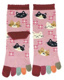 Five-toe Socks Irodori Colorful Cat