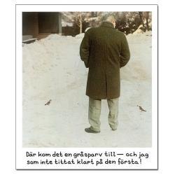 Magnet Jan Stenmark Gråsparv