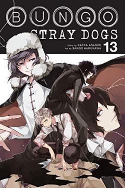 Bungo Stray Dogs Vol 13