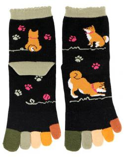 Five-toe Socks Shibainu Colorful (Dog)