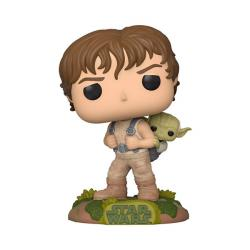 Training Luke with Yoda Pop! Vinyl Figure