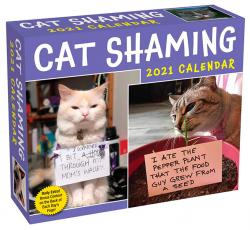 Cat Shaming 2021 Day-to-Day Calendar