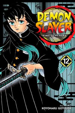 Demon Slayer Kimetsu no Yaiba Vol 12