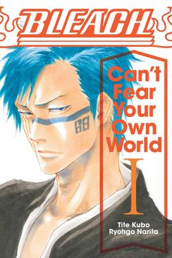Bleach Can't Fear Your Own World Novel 1