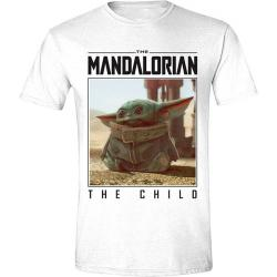 The Mandalorian The Child Photo