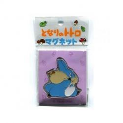 My Neighbor Totoro Magnet Medium Totoro Acorn