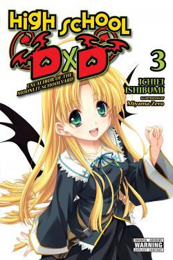 High School DXD Light Novel 3