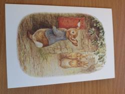 Peter Rabbit Postbox Card