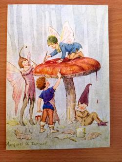 Fairy Land With Mushroom Card