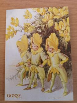 Fairy Land With Gorse Card