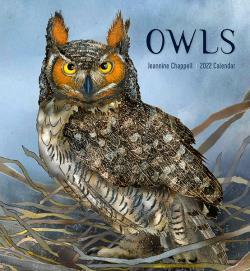Owls Jeannine Chappell 2022 Wall Calendar