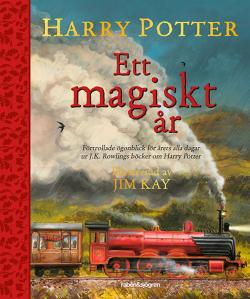 Harry Potter - ett magiskt år