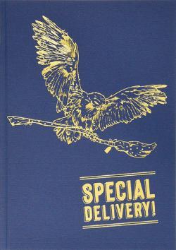 Pop-up Card Hedwig