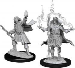 Elf Sorcerer Male (W14)