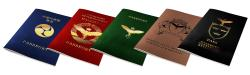 Troubleshooters Passport Set (International)