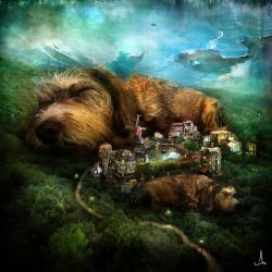 Print 30x30cm - Sleeping Dogs