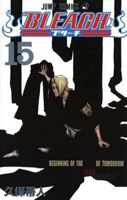 Bleach Vol 15