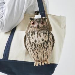 Bottle Case Eurasian Eagle-owl