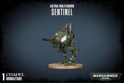 Sentinel 2009