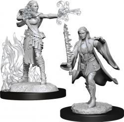 Human Multiclass Warlock/Sorcerer Female